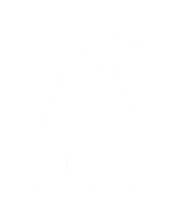 http://rugbyvittorioveneto.it/wp-content/uploads/2019/12/P.V.B.-sas-1.png